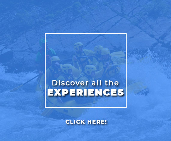 discover-experiences